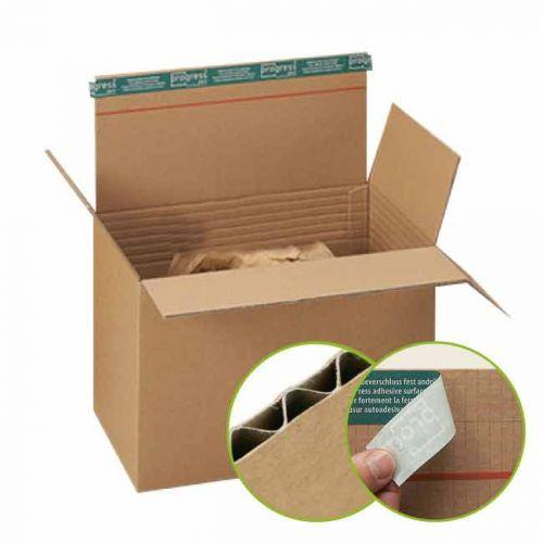 Karton mit Selbstklebeverschluss