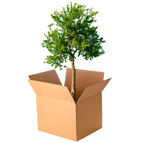 nachhaltige verpackung